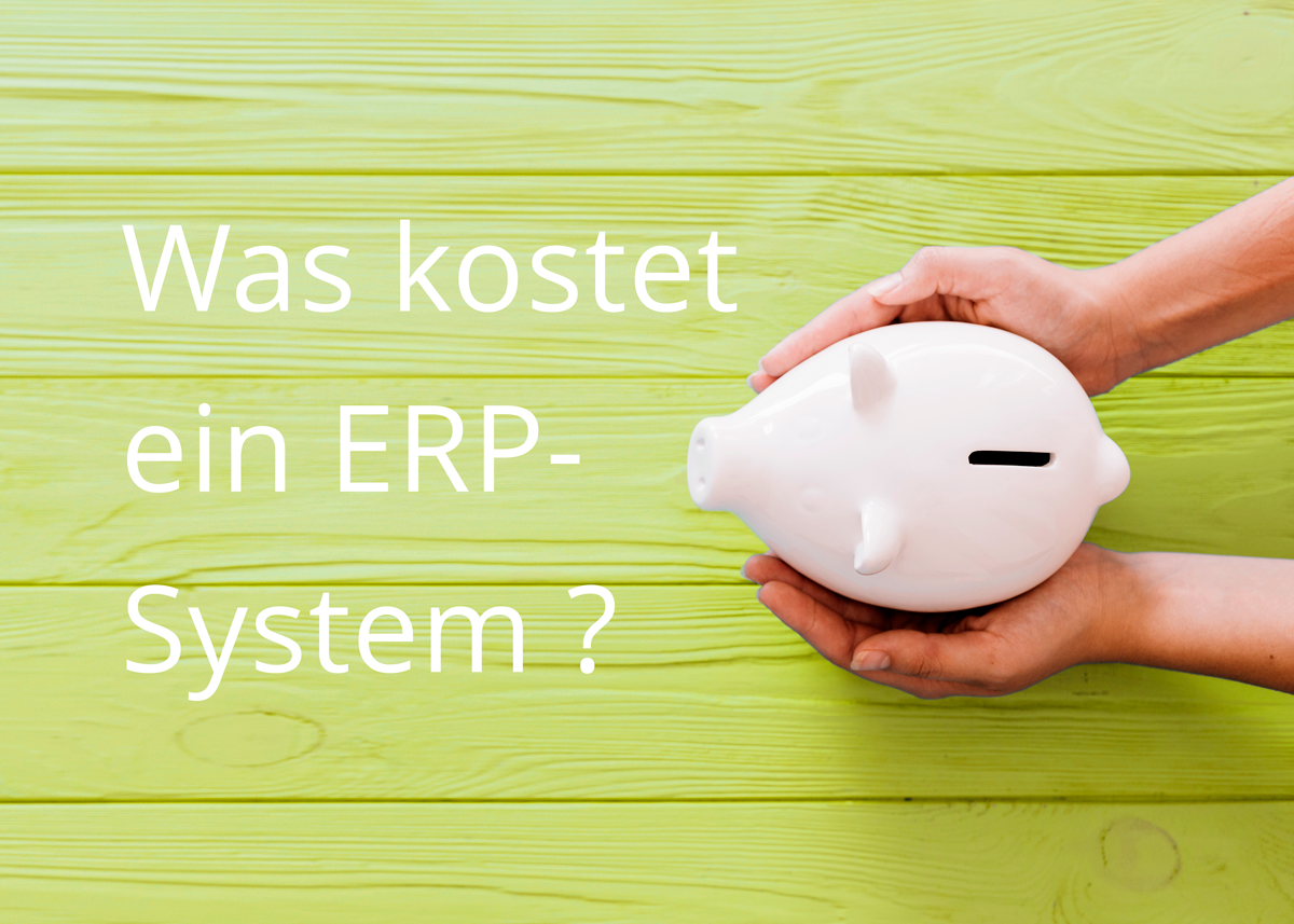 ERP System Kosten