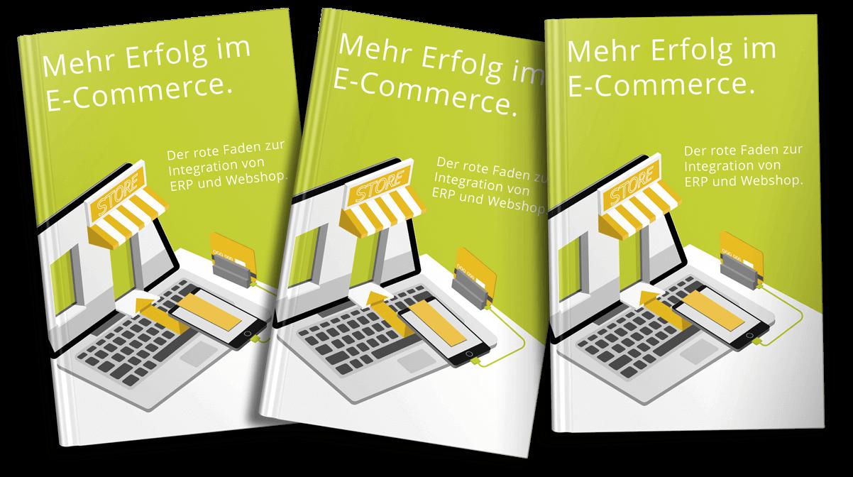 E-Book-Integration-ERP-und-Webshop-x3 (1)