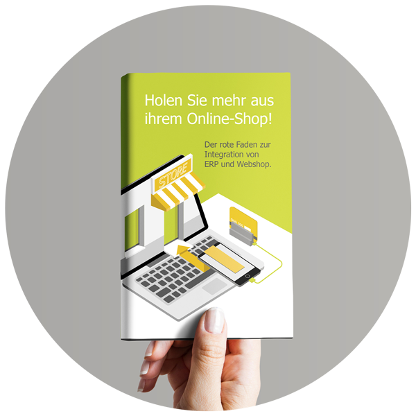 integration-erp-und-webshop-icon-ebook